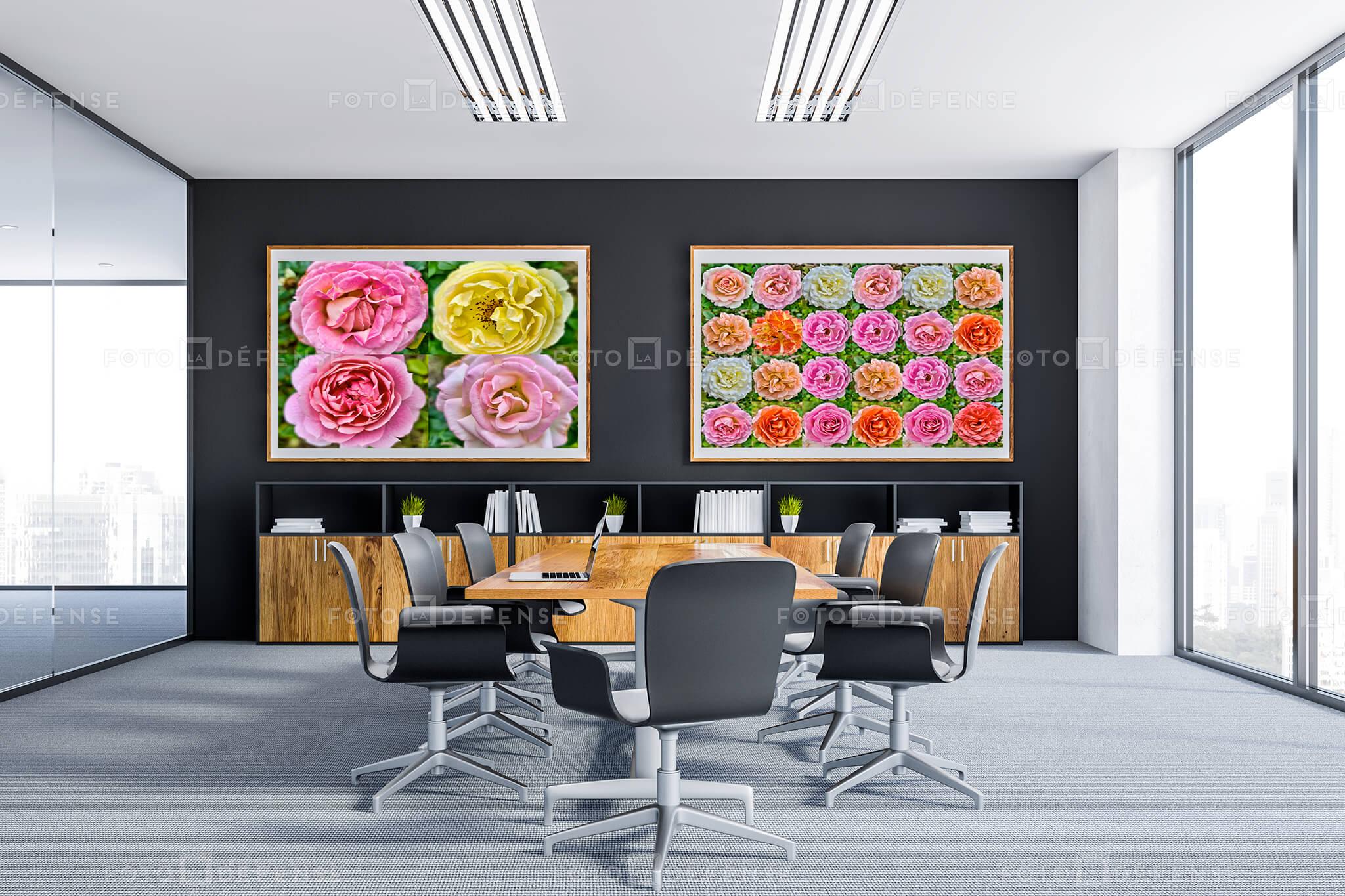 Galerie photos de roses